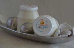 Nature Joghurt